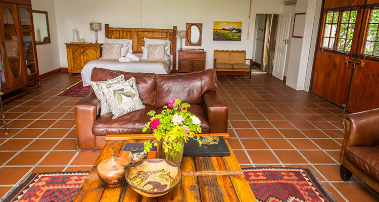Chardonnay | African Vineyard | Upington & Keimoes Accommodation