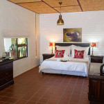Shiraz | African Vineyard | Upington & Keimoes Accommodation